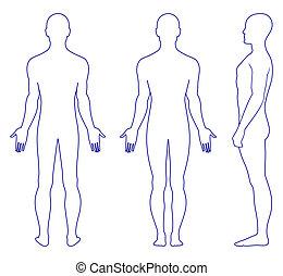 naken, stående, man