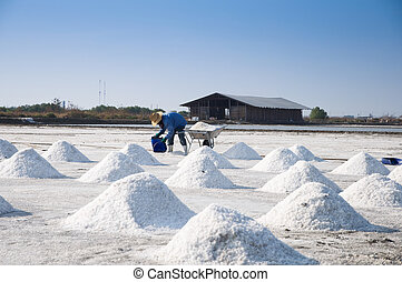 Naklua Mass of salt in salt seaside farm, Samutsungkhram...