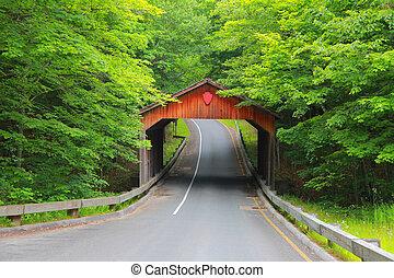 nakrywany most, w, michigan