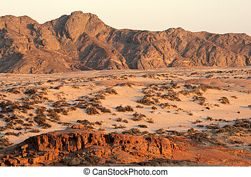Namib desert - Desert landscape, Namib-Naukluft National ...