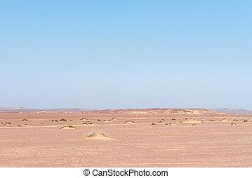 Namib desert landscape in the Skeleton Coast area of Namibia