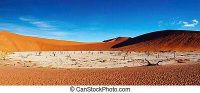Namib Desert, Sossusvlei, Namibia - Dead trees in Dead Vlei...
