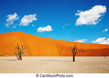 Namib Desert, Sossusvlei, Namibia - Dunes of Namib Desert,...