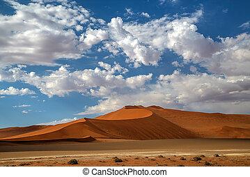 Namib dunes landscape