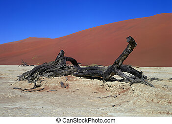namib, panorama, desierto
