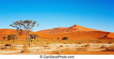namib pustynia