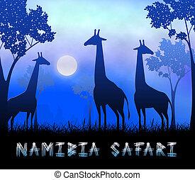 Namibia Safari Showing Wildlife Reserve 3d Illustration - ...