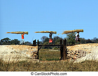 Namibian Women Carrying Hay, Mahangu National Park, Namibia