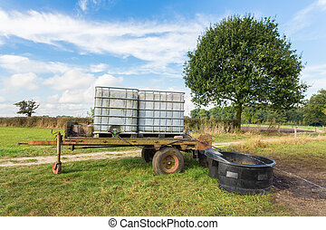 namočit, přepravní skříň, louka, kára, dobytek