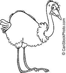 nandu, colorido, caricatura, avestruz, página