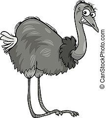 nandu, strauß, vogel, karikatur, abbildung