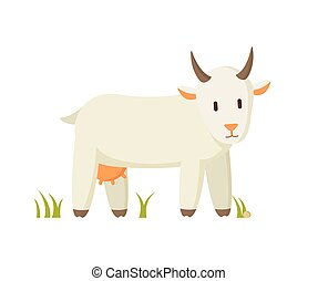 Nanny Goat Standing on Grass Cartoon Character - Goat...