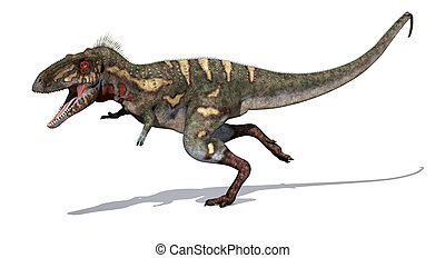 Nanotyrannus Dinosaur on the Run - The Nanotyrannus dinosaur...
