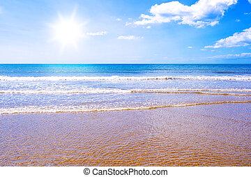 napfény, tengerpart, és, tenger, paradicsom