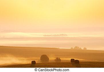 napkelte, képben látható, a, vidéki táj