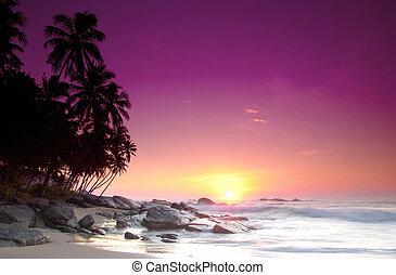 napkelte, képben látható, sri lanka