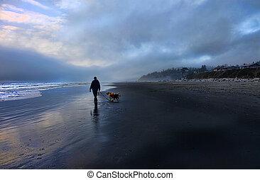 naplemente tengerpart, jár