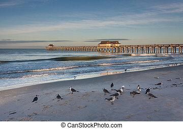 Naples Florida pier at sunrise