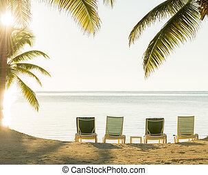 napnyugta, felett, tropical tengerpart, deckchairs