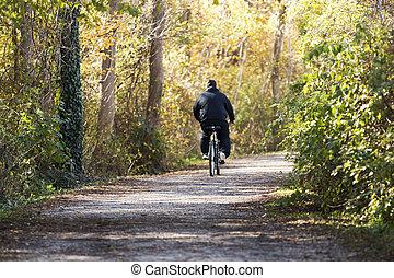 napvilág, képben látható, egy, ember, lovaglás, övé, bicikli, alatt, a, erdő