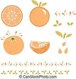 narancs, citrom- és narancsfélék, lemetsz, zöld, lédús, gyümölcs, vektor, szelet, határ