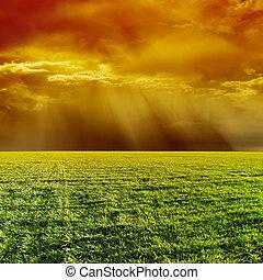 narancs, drámai ég, felett, zöld terep