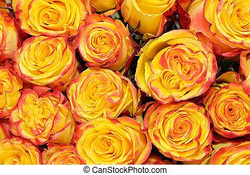 narancs, esküvő bouquet, closeup