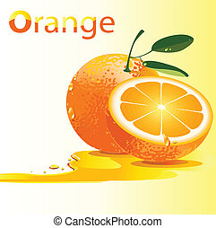 narancs, friss, vektor, ábra