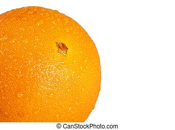 narancs, makro, felett, fehér, nedves
