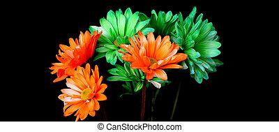 narancs, zöld, százszorszép