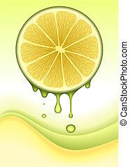 naranja, concepto, vector, limón, /