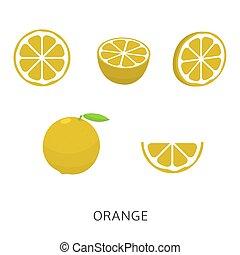 naranja, conjunto, vector, ilustración
