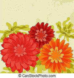 naranja, crisantemos, grunge, fondo rojo