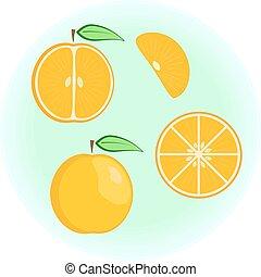 naranja, plano, vector, conjunto
