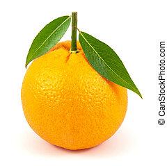 naranja sale, blanco, maduro