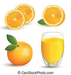 naranja, vector, conjunto