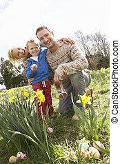 narciso, família, ovo caça, campo, páscoa