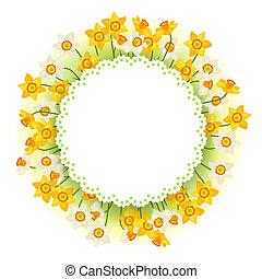 narcisse, fleurs ressort, naturel, arrière-plan.