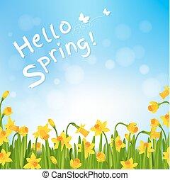 narcisse, printemps, bonjour, affiche