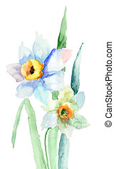 Narcissus flower. Watercolor illustration