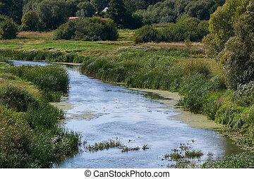 narev, rio, em, verão
