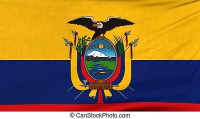narodowa bandera, od, ekwador, przelotny, na, przedimek określony przed rzeczownikami, wiatr