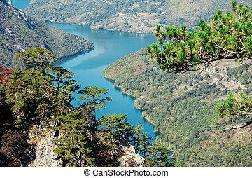 "narodowy park, serbia, jezioro, perucac., ""tara""."
