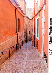 Narrow alley in the old town of Toledo, Spa