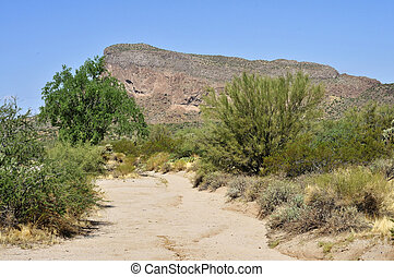 Narrow Arizona desert arroyo - Desert Mountains Viewed from ...