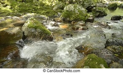 Narrow brook flowing - White narrow brook flowing through...