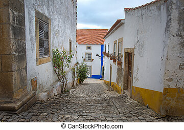 Narrow Colorful Street in the Medieval Portuguese City of Obidos