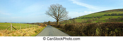 Narrow country road panorama near Garth, Wales UK.