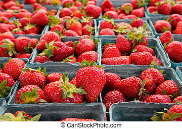 Narrow focus horizontal strawberries - Single sharp image of...