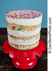 Narrow Focus of Naked Funfetti Cake on red cake stand